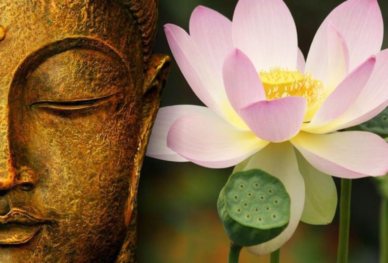 lotus bouddha